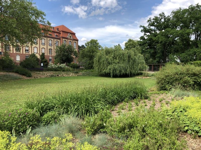 Fertigstellung Der Neupflanzungen Auf Dem Jurgen Fuchs Platz In Dahlem Berlin De