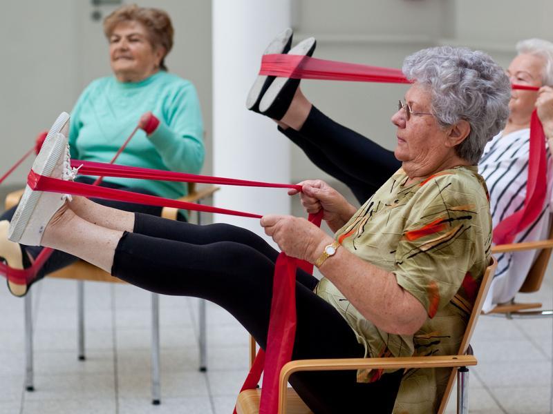 Sport Mit Senioren