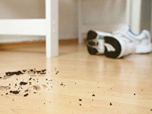 Fußboden Mieter Oder Vermieter ~ Dielenboden mieter sind für pflege verantwortlich u berlin