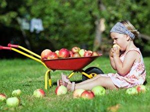 Kindern Gartenarbeit näherbringen