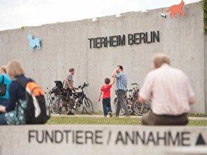 Event Highlights Im November 2020 Berlin De