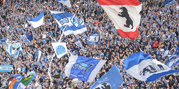 Hertha Bsc Berlinde