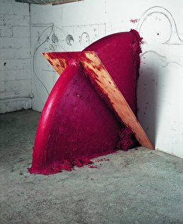 Anish Kapoor: Up Down Shadow  2005