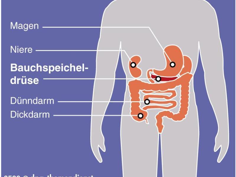 Pankreatitis: Ursachen, Symptome und Behandlung der..