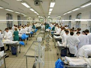 Medizinstudenten an der Universität Halle-Wittenberg