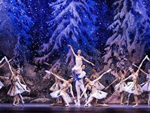 Tschaikowsky Ballett-Festival