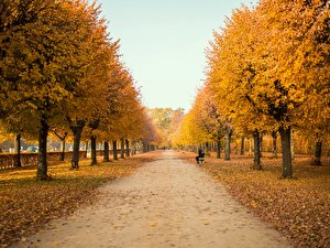 Berlindian Summer: Goldener Herbst in Berlin (8)