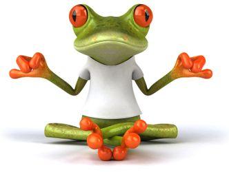 Bildvergrößerung: meditierender Frosch mit weißem T-Shirt