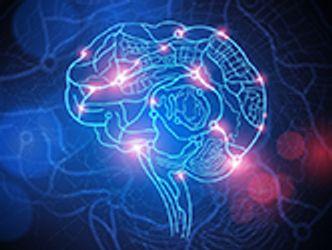 Bildvergrößerung: Gehirnjogging
