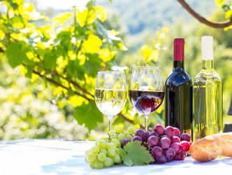 Bildvergrößerung: Ein Tisch im freien auf dem zwei verschiedene Sorten Wein in 2 Flaschen und in 2 Gläsern stehen, davor 2 Sorten Weintrauben und ein Baguette
