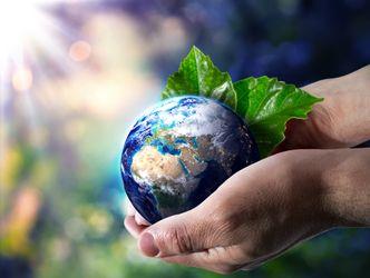 Bildvergrößerung: Weltkugel in Hand - Umweltkonzept