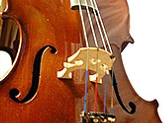 Bildvergrößerung: Violoncello, Bildausschnitt